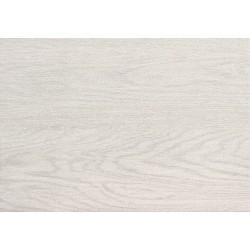 Faianta Inverno White 250x360